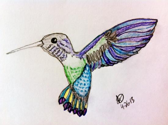 DeAnnaDimmitt_hummingbird2_c